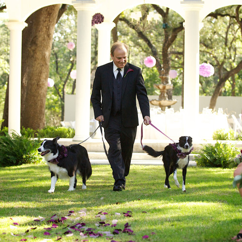 pet friendly wedding san antonio